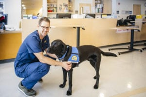 HUggie, a black lab and UC Davis Health facility dog, with a male nurse in the cancer center.